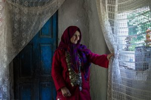ذوالقدر:  ۲۳۰ میلیارد تومان برای بیمه زنان سرپرست خانواراختصاص یافت