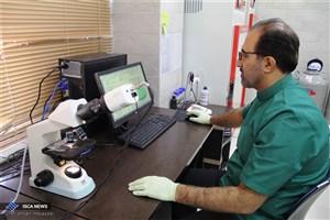 راهاندازی بخش آندرولوژی دامی و آزمایشگاه کشت سلولی و بافت