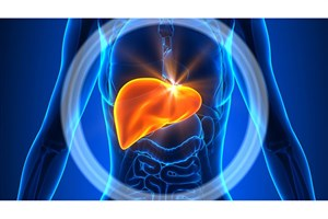 Iranian Researcher Discovers Hepatic Regulation Modulates Non-Alcoholic Fatty Liver Disease