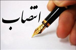 سرپرست اداره کل کتابخانههای عمومی استان البرز منصوب شد