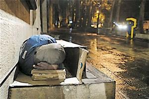 3500 کارتن خواب از شب گذشته تاکنون جمع آوری شدند