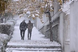باید ها و نبایدها  در رویارویی  با برف و کولاک