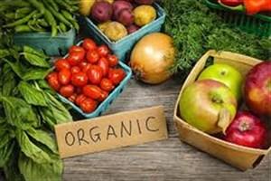 حفظ اکوسیستم منطقه با توسعه ی کشاورزی ارگانیک
