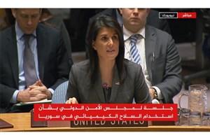 بررسی موضوع استفاده از سلاح شیمایی سوریه در شورای امنیت