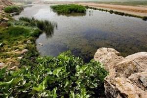 """خشکی تالاب """"هشیلان"""" در زمستان طی 50 سال اخیر سابقه نداشته است"""