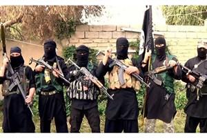 25 نیروی نظامی عراق به دست داعش کشته شدند