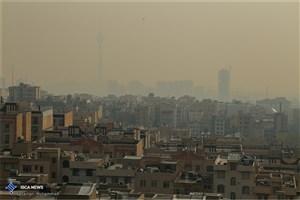 هوای تهران آلوده شد/تعطیلی مدارس از پس آلودگی هوا بر نیامد/گروه های حساس بیرون نروند
