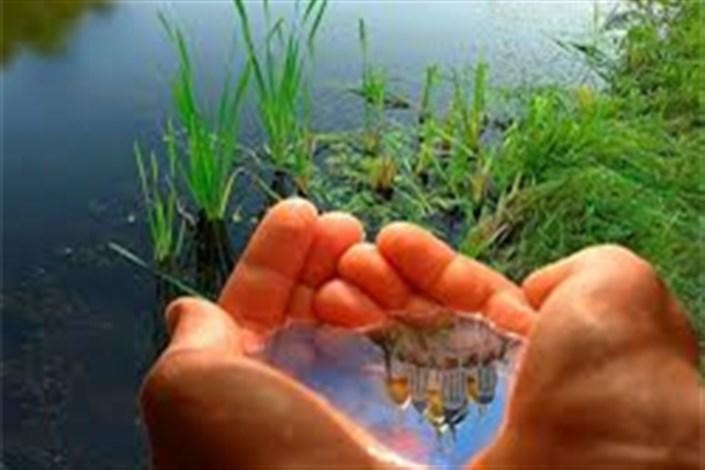 حرکت در جهت توسعه سبز انتخاب نیست اجبار است/ بنویسیم طبیعت و بخوانیم زندگی