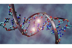 Iranian Researchers Discover New Effective Genes for Genetics of Intellectual Disability