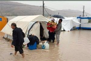 توضیحات معاون استاندار کرمانشاه پیرامون آبگرفتگی و مصائب زلزله زدگان پس از بارش باران