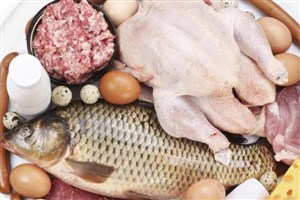 تولید کم و معدوم شدن مرغهای آلوده علت گرانی/ قیمت مرغ تا پایان هفته 8300 تومان!