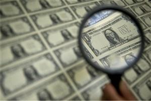 رفع نوسانات ارزی با طرح تفحص وزارت اقتصاد هموار می شود؟