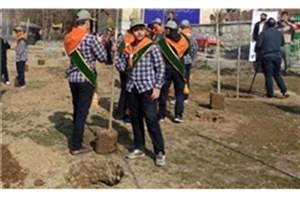 در آستانه روز درختکاری ؛ دانش آموزان به کاشت نهال میپردازند