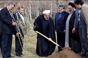 بهره برداری از طرح ۱۲۰۰ هکتاری کمربند سبز پیرامون تهران آغاز شد