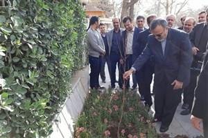 غرس نهال به همت استاندار خراسان رضوی در یکی از بوستان های مشهد