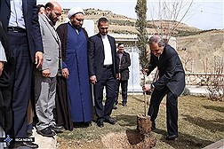 Dr. Velayati Plants Saplings to Mark National Arbor Day / In Photos