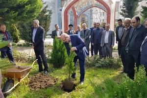 غرس بیش از 1500 اصله درخت و مرکبات در دانشگاه آزاد واحد بابل