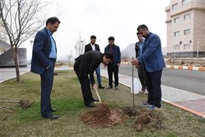 کاشت نهال به مناسبت هفته منابع طبیعی در محوطه دانشگاه آزاد اسلامی واحد بوکان
