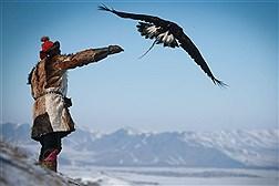 فستیوال بهاری عقاب طلایی در مغولستان