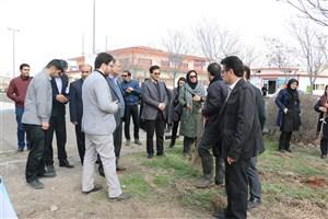کاشت نهال به تعداد دانشگاهیان استان اردبیل