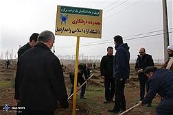 غرس 1000 اصله نهال از سوی کارکنان، اساتید و دانشجویان دانشگاه آزاد اسلامی واحد اردبیل  در مسیر جاده اردبیل به خلخال