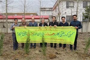 کاشت 150 اصله نهال در سما سیاهکل به مناسبت هفته درختکاری