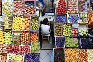 افزایش قیمت میوه به بنزین ربطی ندارد