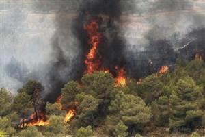 بیش از ۱۷ هکتار از پوشش مرتعی و علفی جهرم در آتش سوخت