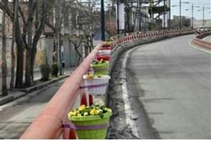 ۸۵۰ گلدان از معابر اردبیل ناپدید شد