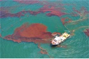 افزایش 10 برابری حذف آلایندههای نفتی با باکتریهای اصلاحشده با نانوذرات