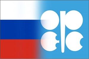 روسیه ایجاد سازمان مشترک با اوپک را بررسی میکند
