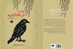 رمانی از پدر ژانر وحشت برای نخستینبار در ایران منتشر شد