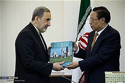 Dr. Velayati Meets with China's Foreign Policy Advisory Committee / In Photos