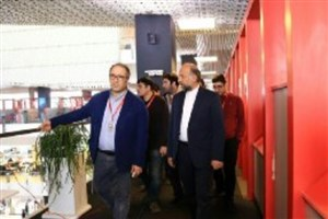 رییس سازمان سینمایی از پردیس چارسو بازدید کرد