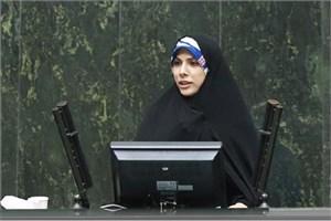 حسینی: دولت به طور مشخص تکلیف متقاضیان ارز را مشخص نکرد