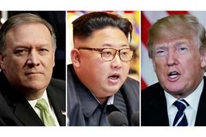 ترامپ دیدار محرمانه پومپئو و رهبر کره شمالی را تائید کرد
