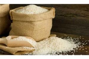 مجوز واردات برنج صادر شد+سند