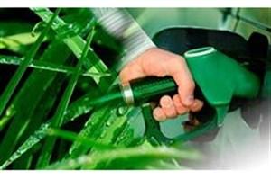 استفاده از سوخت زیستی برای رفع مشکل آلودگی هوا نیازمند عزم ملی است