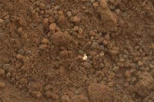 ESA and NASA to Bring Samples of Martian Soil to Earth