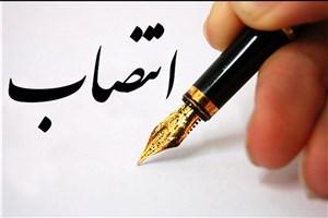 سرپرست روابط عمومی دانشگاه علوم پزشکی آزاد اسلامی تهران منصوب شد