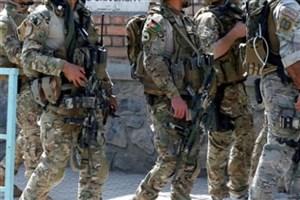 آمریکا: کاهش نیروهای امنیتی افغانستان علت نا امنی است
