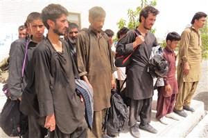 مجازات به کارگیری اتباع بیگانه در مشاغل چیست؟