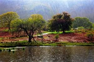 ارتفاع بارشها به ۱۵۶ میلی متر رسید/ کاهش ۳۰ درصدی بارندگی نسبت به سال گذشته