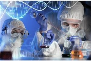 Nano Match Plan to Support Iranian Nano Products