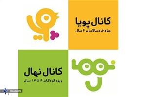 قائم مقام شبکه کودک منصوب شد