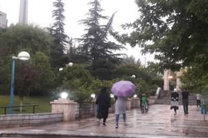رگبار باران، صاعقه و وزش باد شدید تا روز چهارشنبه/ پیشبینی بعدازظهر بارانی برای تهران
