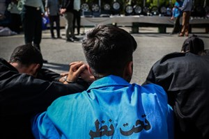 معاون نیروی انسانی فرماندهی انتظامی تهران بزرگ: بهکار گیری پلیس افتخاری خانم منعی ندارد