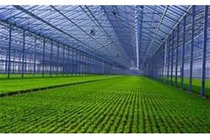 """S & R IAU to Run """"Green School"""""""