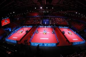 قبولی ۷ داور ایرانی در آزمون بینالمللی تنیس روی میز
