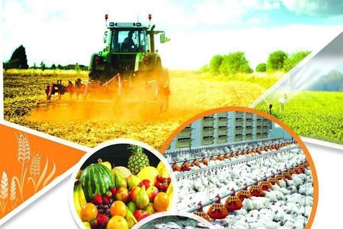 بورس کشاورزی